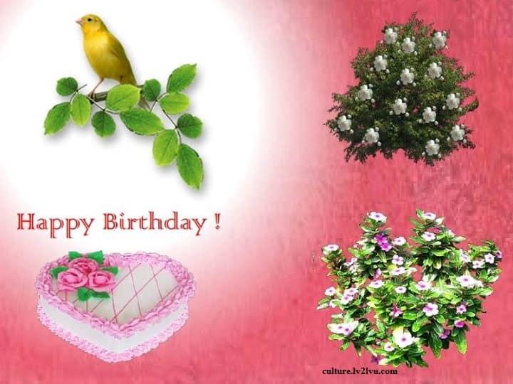 Happy Birthday wish for lover